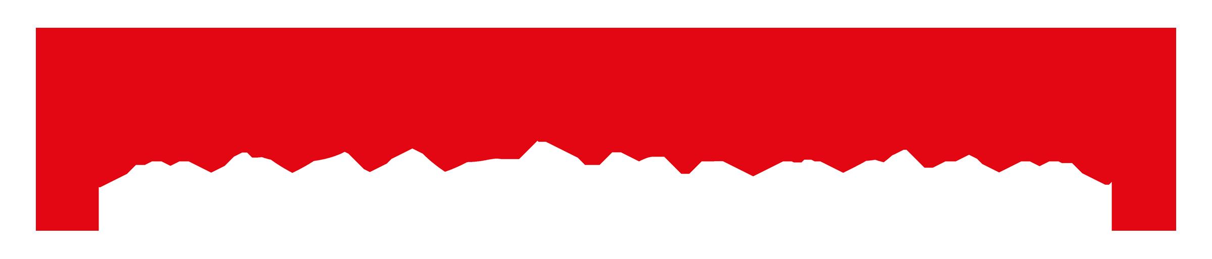 Regio_Medien_Unterfranken_Logo negativ transparent